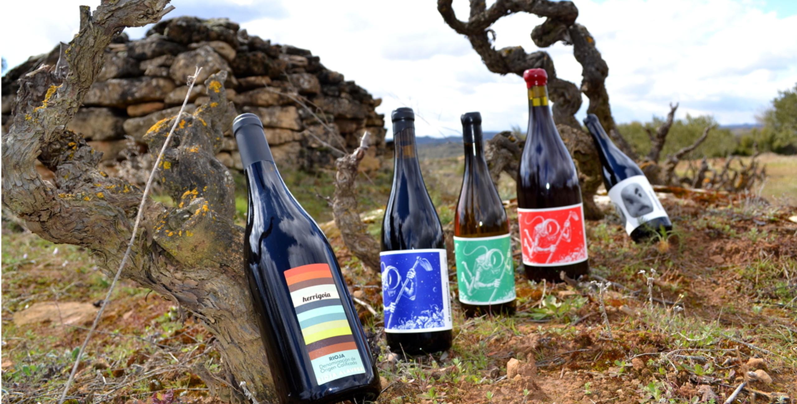 catalogo_vino_largo